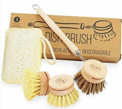 Scrubbing Brush And Sponge- Home