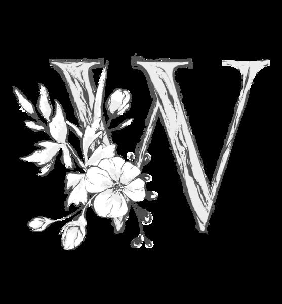 Wildflower Floral Studio