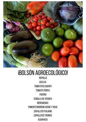 BOLSON AGROECOLÓGICO 10 KG