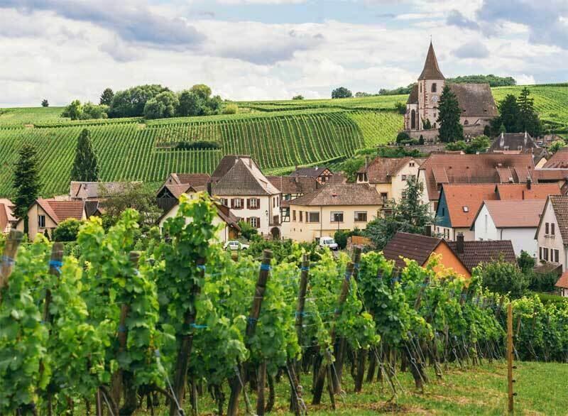 July 13th Burgundy Tasting with David McCarus