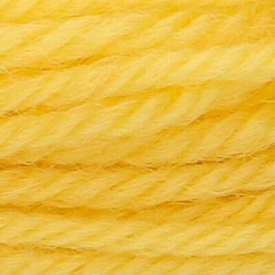 Anchor Tapisserie Wool #  08016