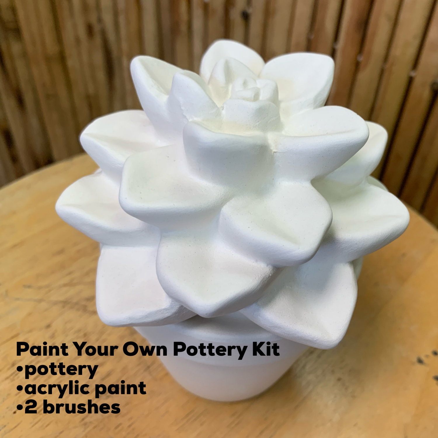 NO FIRE Paint Your Own Pottery Kit -  Ceramic Succulent Cactus Plant Acrylic Painting Kit