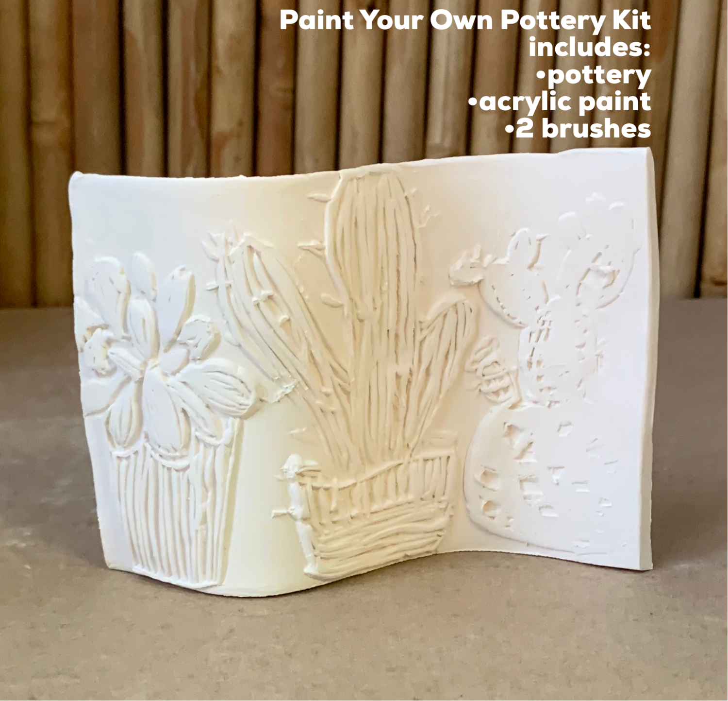 NO FIRE Paint Your Own Pottery Kit -  Ceramic Self Standing Cactus Succulent Tile Acrylic Painting Kit