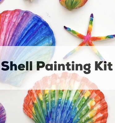 Seashell Acrylic Painting Kit - 4 Unpainted Shells