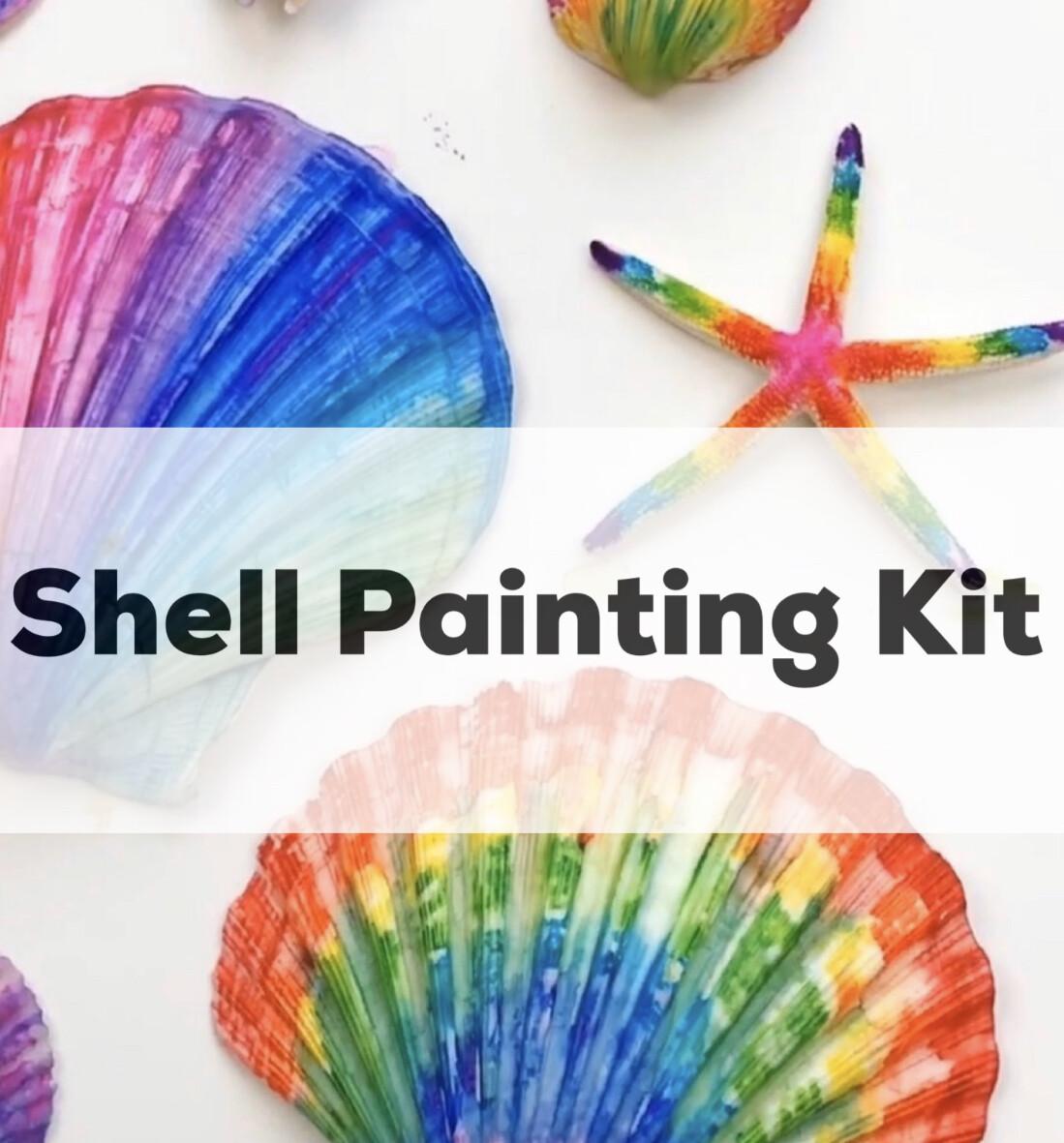 Seashell Acrylic Painting Kit - 6 Unpainted Shells