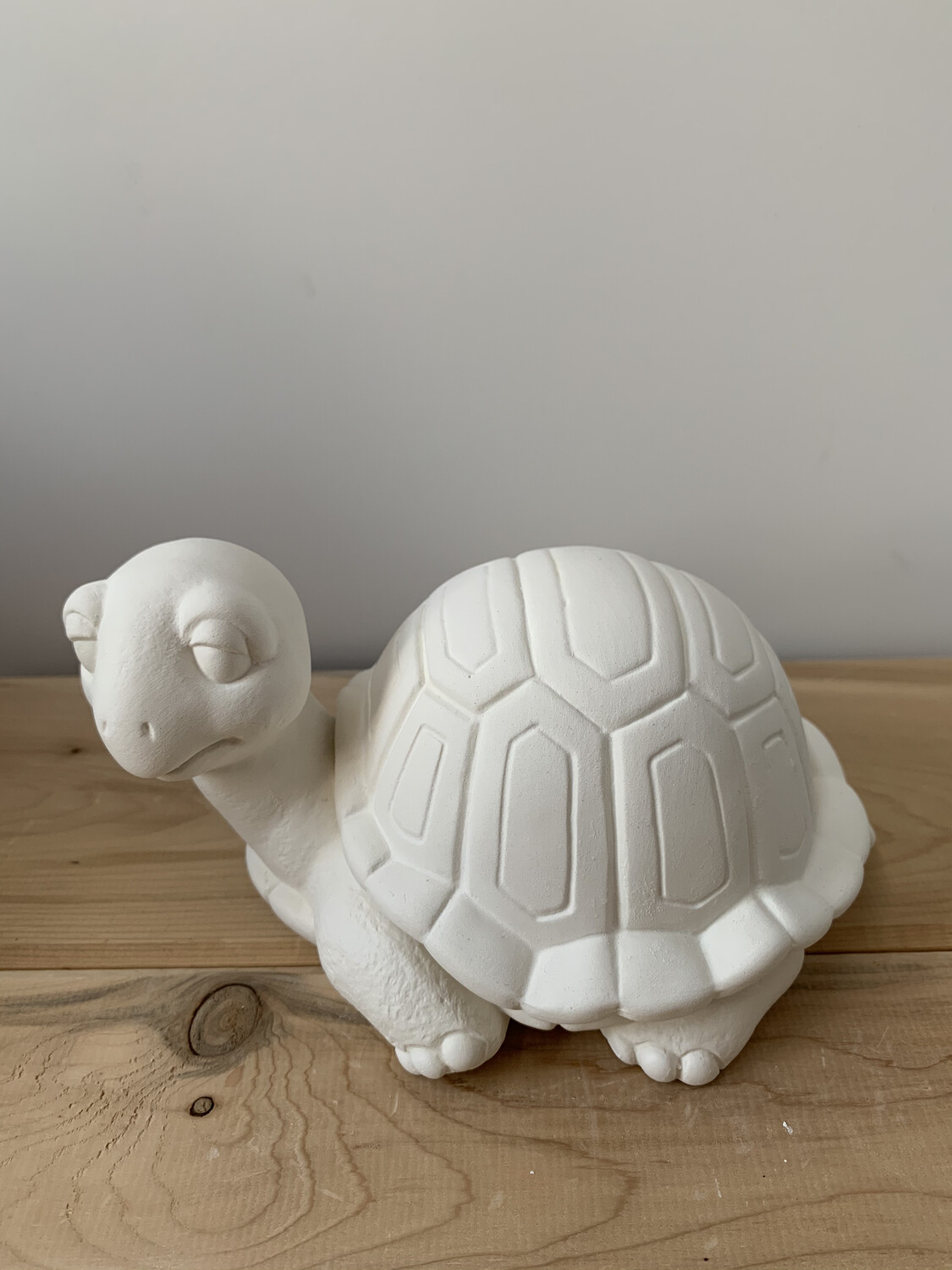 Paint Your Own Pottery - Ceramic   Turtle Box Painting Kit