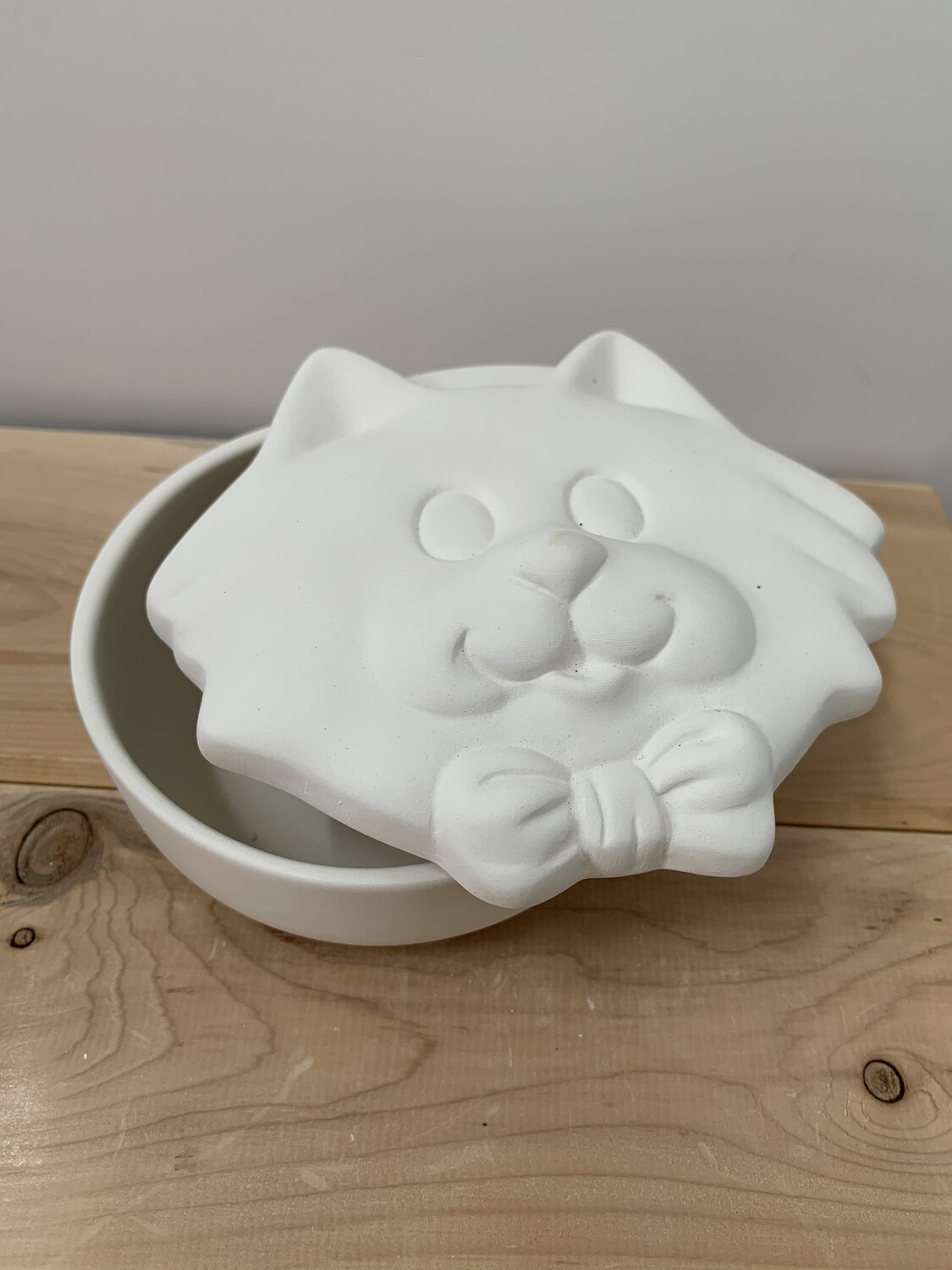 Paint Your Own Pottery - Ceramic   Cat Box Painting Kit