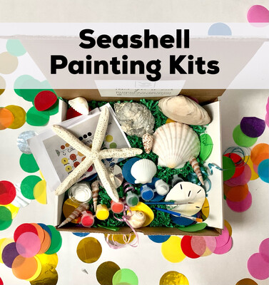 Seashell Acrylic Painting Kit - 10 Unpainted Shells