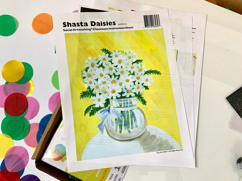 Shasta Daisies ADULT Acrylic Paint On Canvas DIY Art Kit
