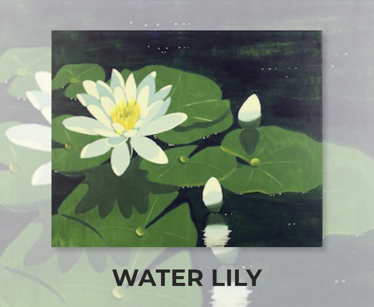 Water Lily ADULT Acrylic Paint On Canvas DIY Art Kit - 3 Week Special Order