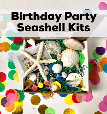 Discounted Birthday Party Kits - Seashell Painting Kits - Minimum of 6 Guests