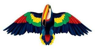 Toucan Kite