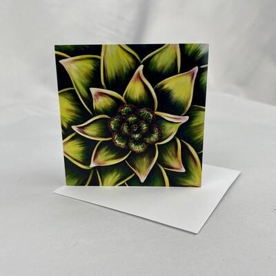 Succulent - Mini Cards