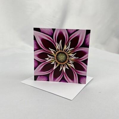 Spellbound - Mini Cards