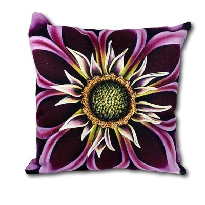 Spellbound Pillow Cover (18