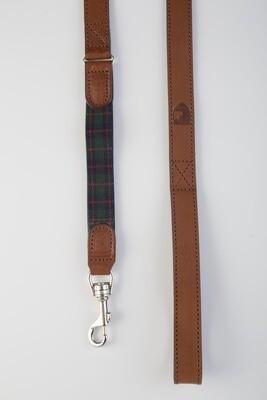 Edimburgh groen leiband - Stock