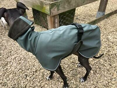Magic Raincoat Sighthound - Stock