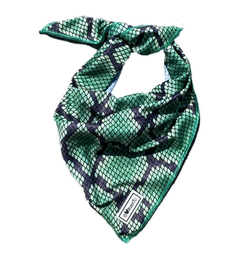 Bandana Green snake