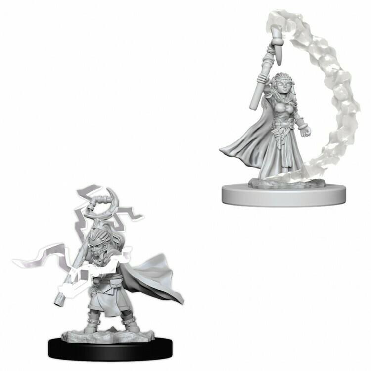 Female Gnome Sorcerer W5