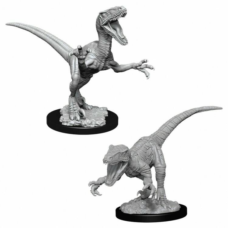 Raptors W11