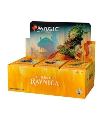 MtG: Guilds Of Ravnica Draft Booster Box