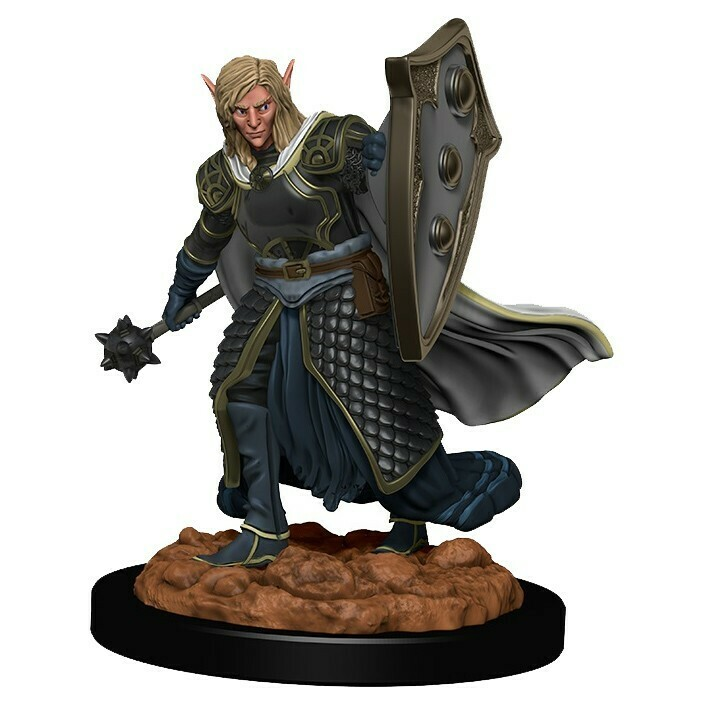 Icons of the Realm Premium: Elf Male Cleric