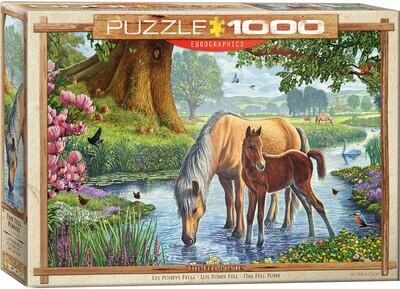 The Fell Ponies by Steve Crisp