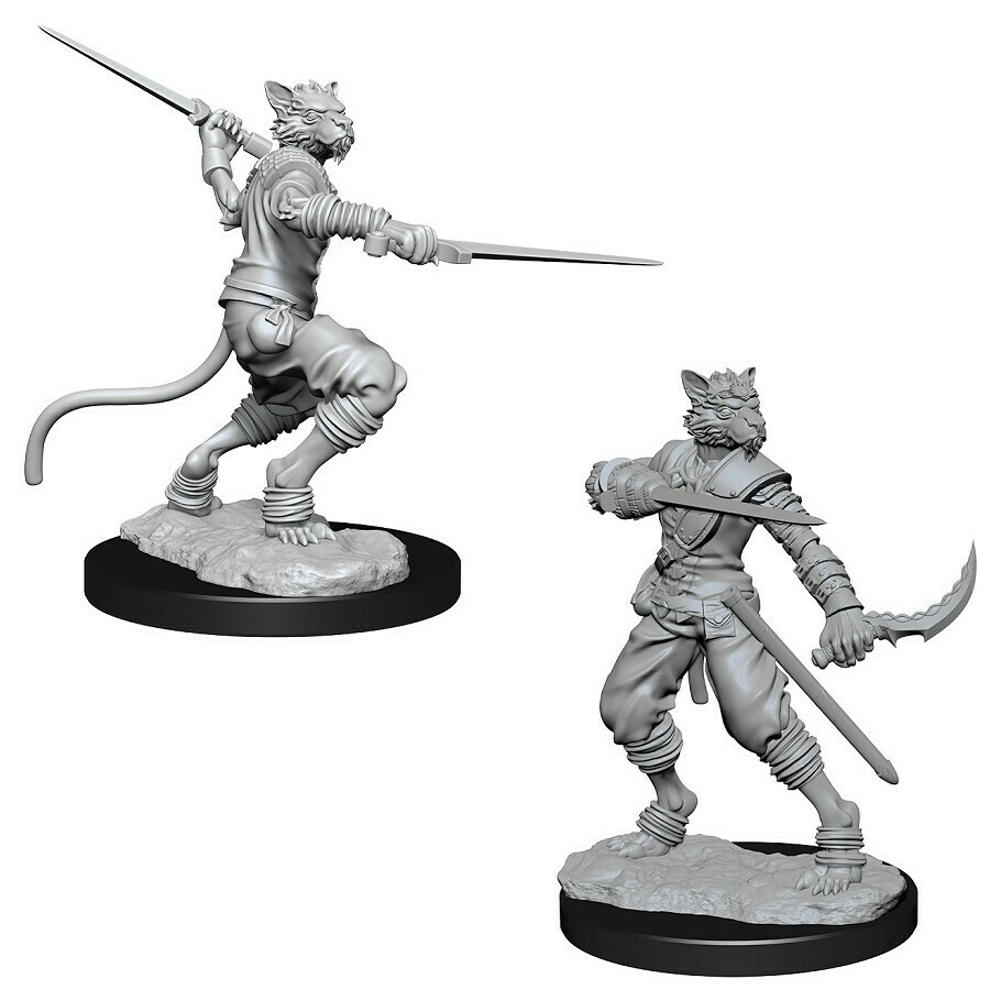 Tabaxi Male Rogue