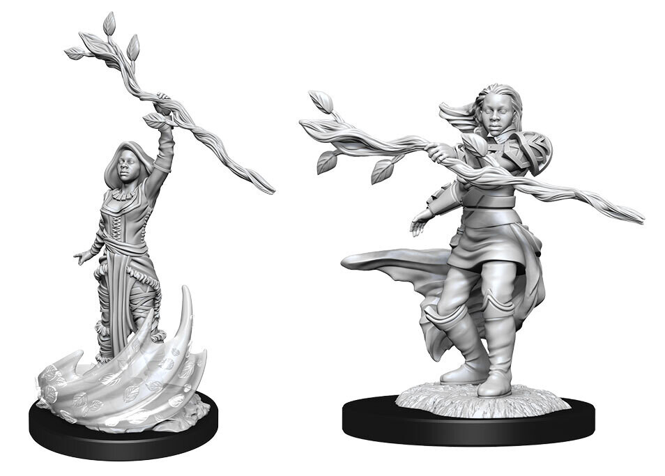 Female Human Druid W14