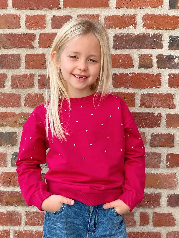Shiny fuchsia sweater