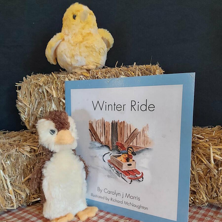 Winter Ride - The Railfence Bunch Series by Carolyn j. Morris