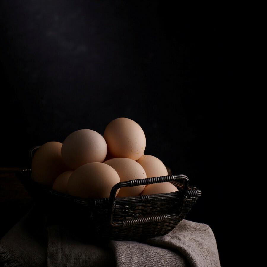 Farm Fresh Eggs - White Feather Farms
