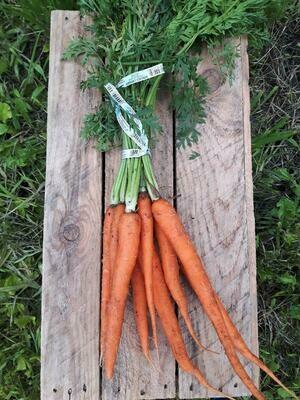 Sweet Carrots - 1 bunch
