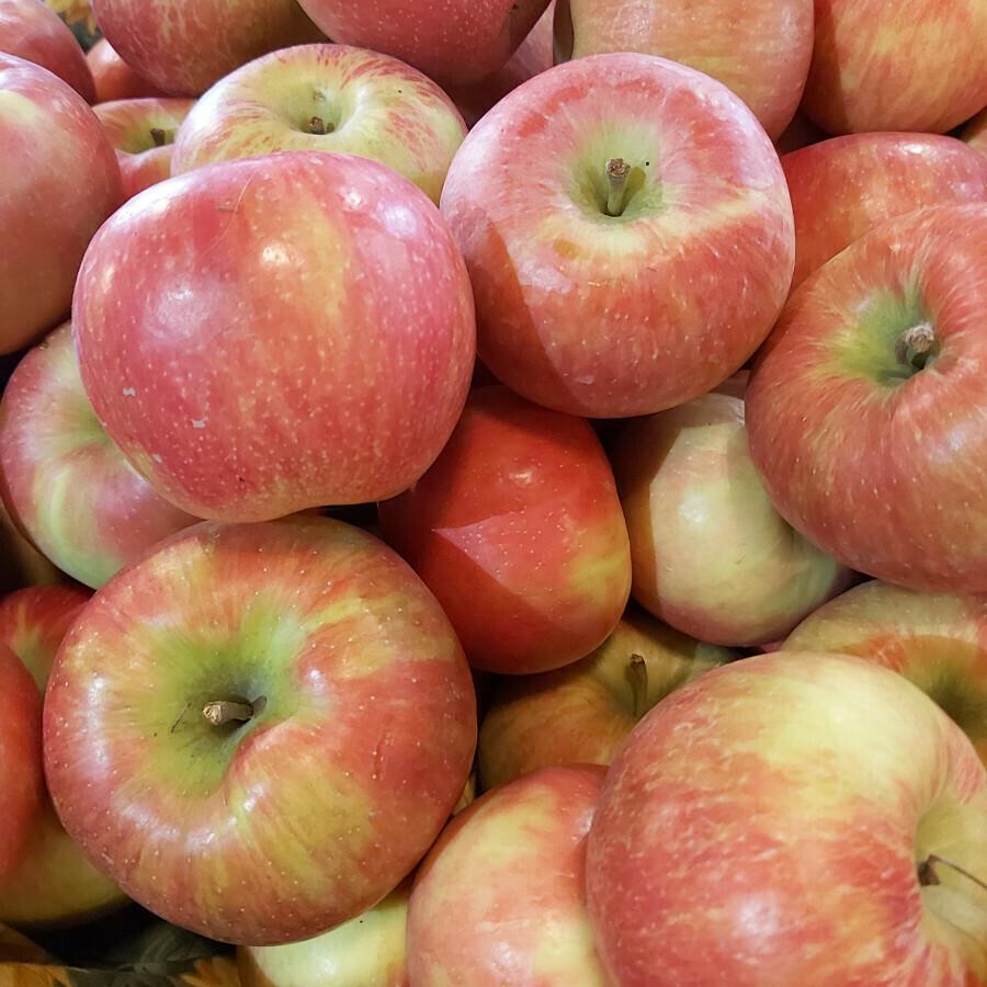 Apples - Honeycrisp (half peck ~5lb)