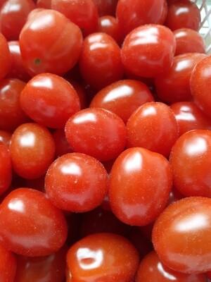 Tomatoes - Grape