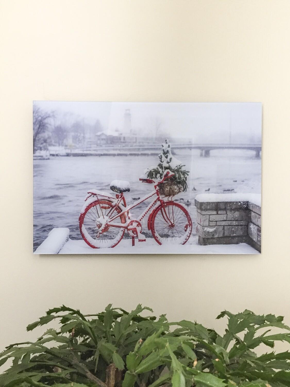 Port Credit Red Bike in Winter