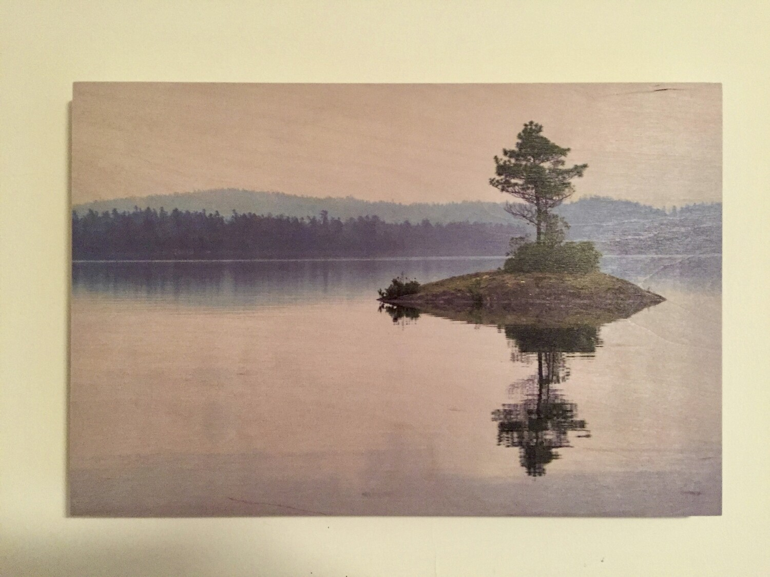 Lonely Pine on Lake Temagami