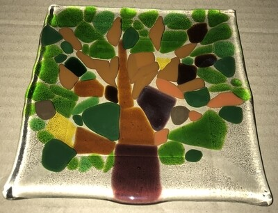 "6"" Square Fused Glass Plate"