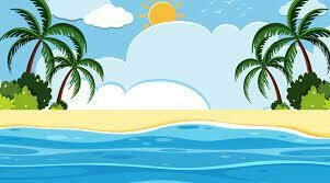 Surf's Up!: July 26th - 30th / 9:00 - 12:00pm