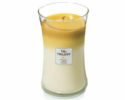 WW Trilogy Fruits of Summer Large Candle