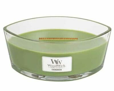 WW Evergreen Ellipse Candle