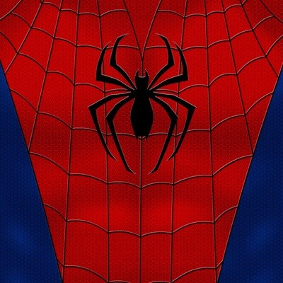 Spider | Comic