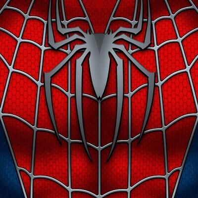 Spider | Raimi