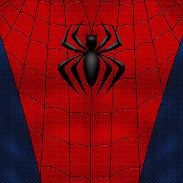 Spider | Superior