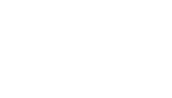 THE MASK STORE