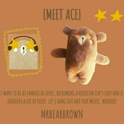 MrBearBrown in Gift Box - ACE