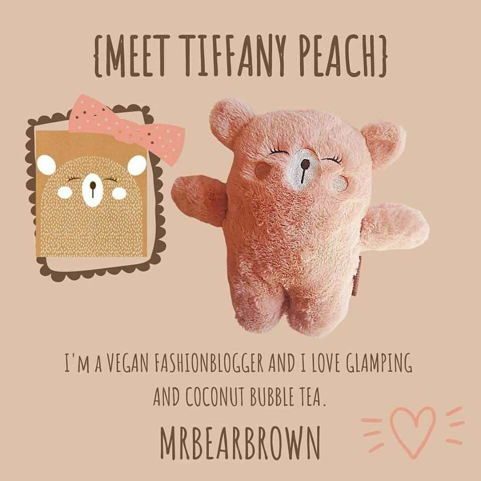 MrBearBrown in Gift Box - TIPHANY PEACH
