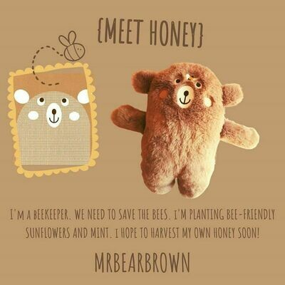 MrBearBrown in Gift Box - HONEY