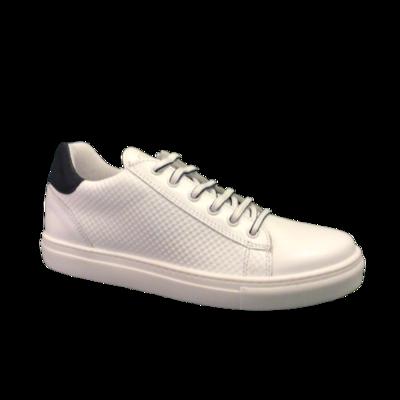 Terre Bleue jongensschoenen white+navy