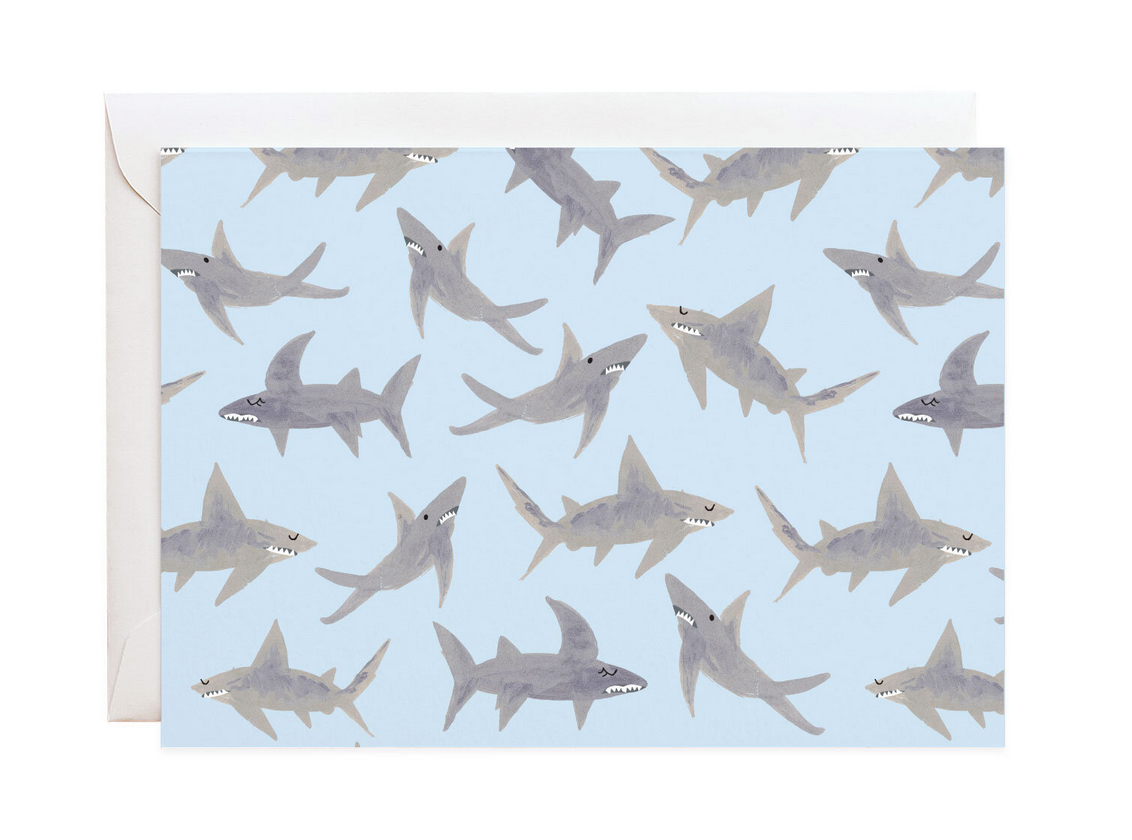 School of Sharks Boxed